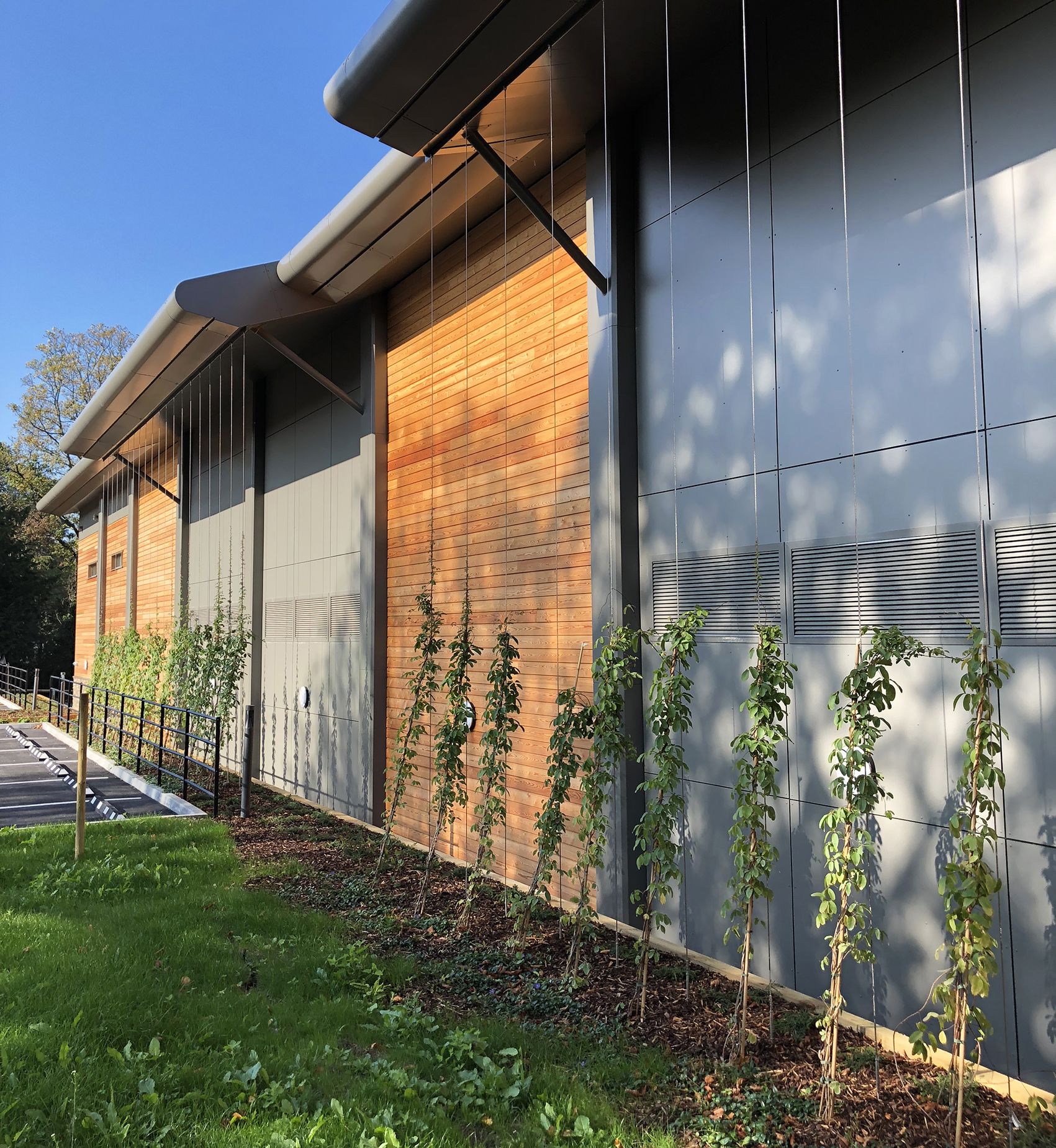 New Sports Centre, Badminton School, Bristol